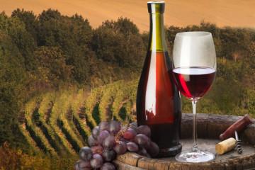 На российском ТВ может появиться реклама вина из стран ЕАЭС